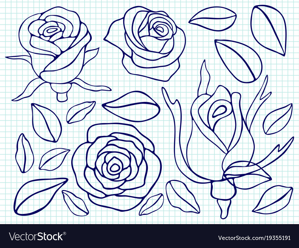 Ballpoint pen drawing roses and leaves