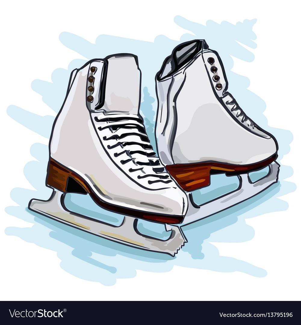 Womens figure skates vector image