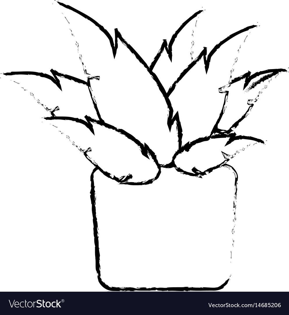 Pot plant natural decoration ecology sketch vector image