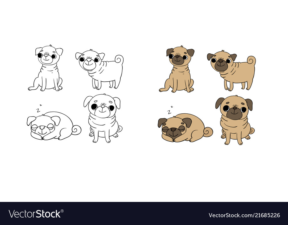 Cute pugs dogs hand drawing isolated objects on