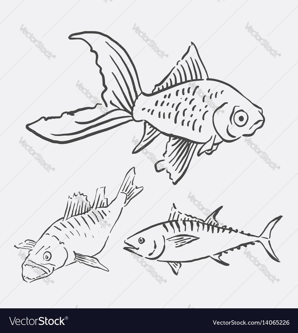Fish animal sketch