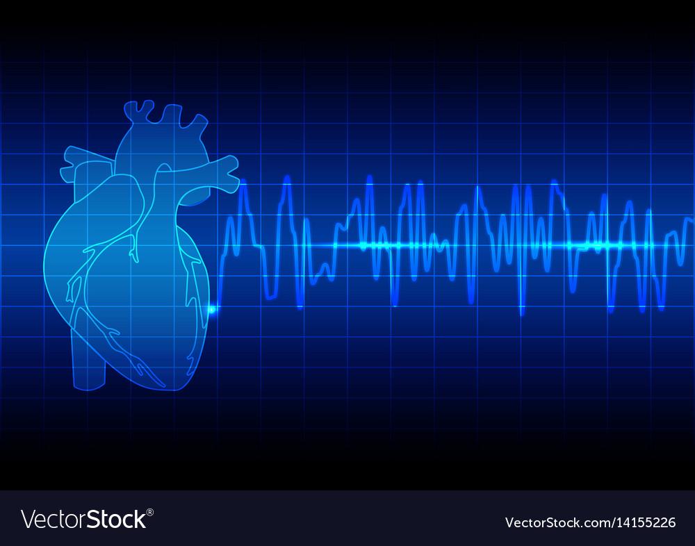 Heart rhythm ekg on blue background vector image