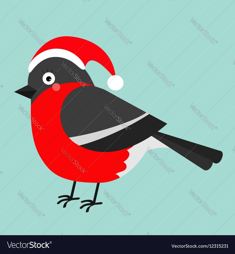 Bullfinch winter red feather bird Santa hat Cute