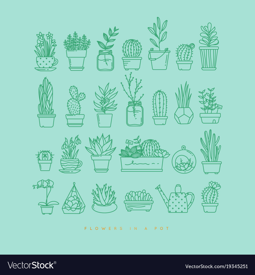 Icon plants in pots turquoise