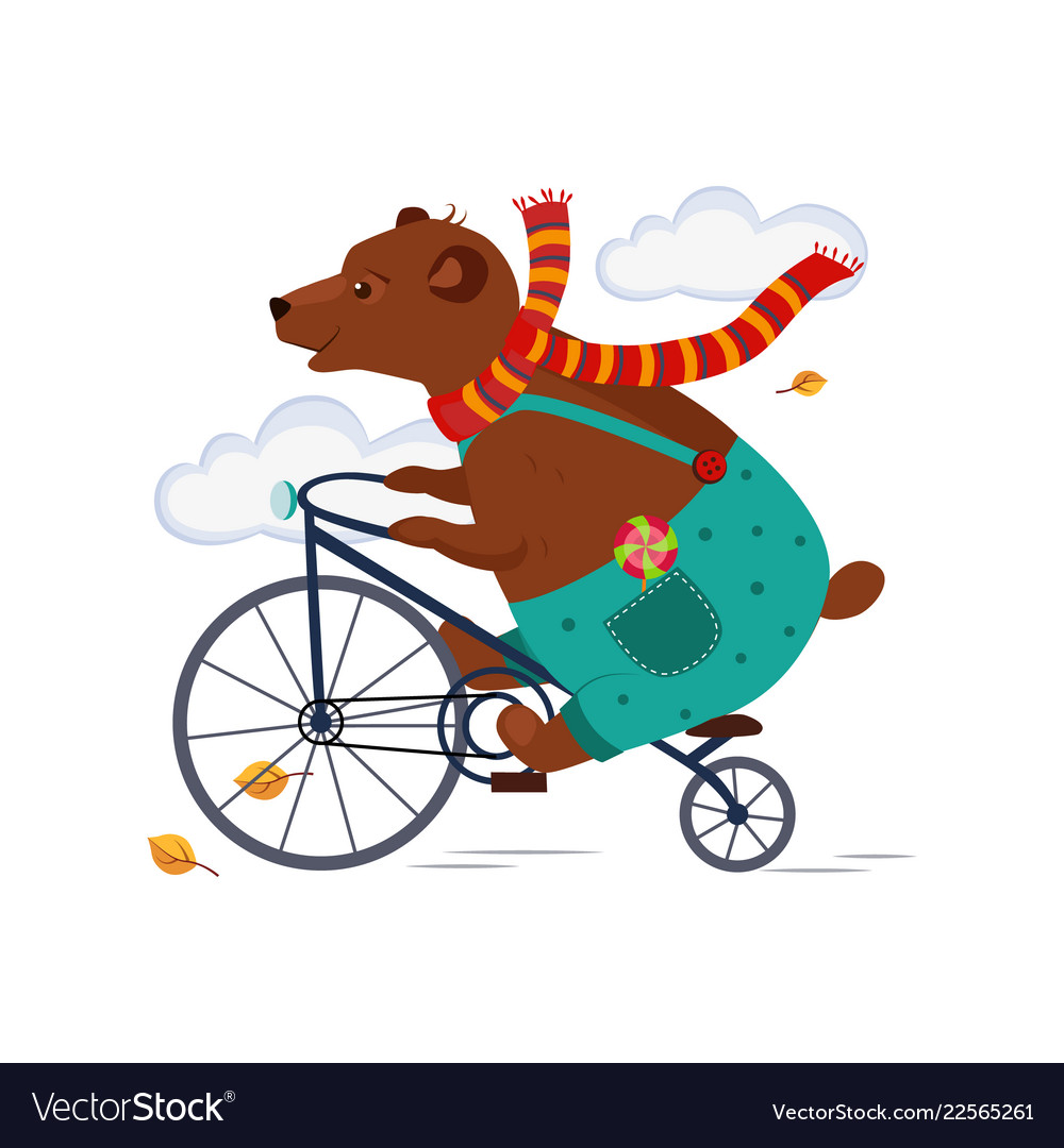 Bear riding a bicycle in scarf iautumn