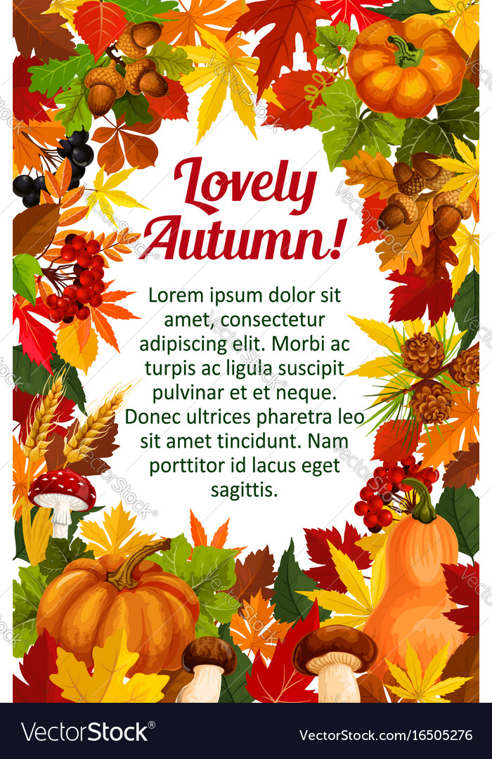 autumn leaf poster template with fall nature frame vectorstock