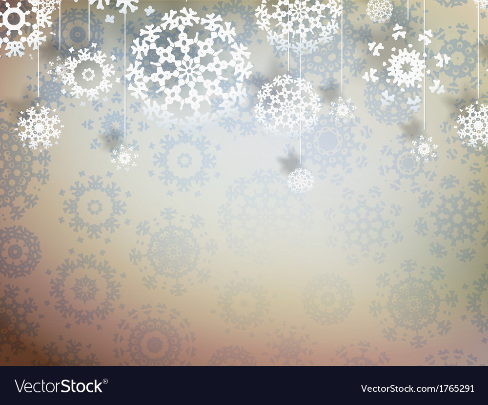 High definition snowflakes EPS 10 vector image
