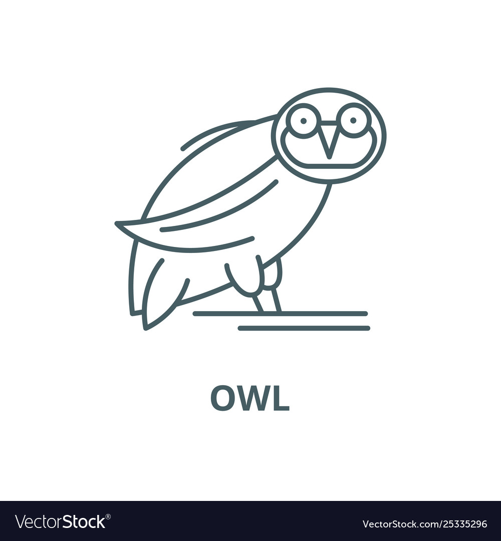 Owl line icon linear concept outline sign