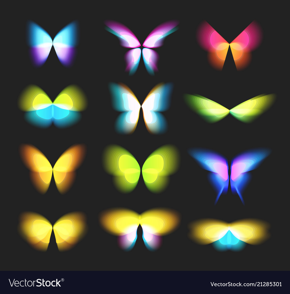 Butterfly isolated logos set bright colorfull