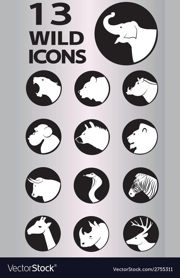 Icon wild