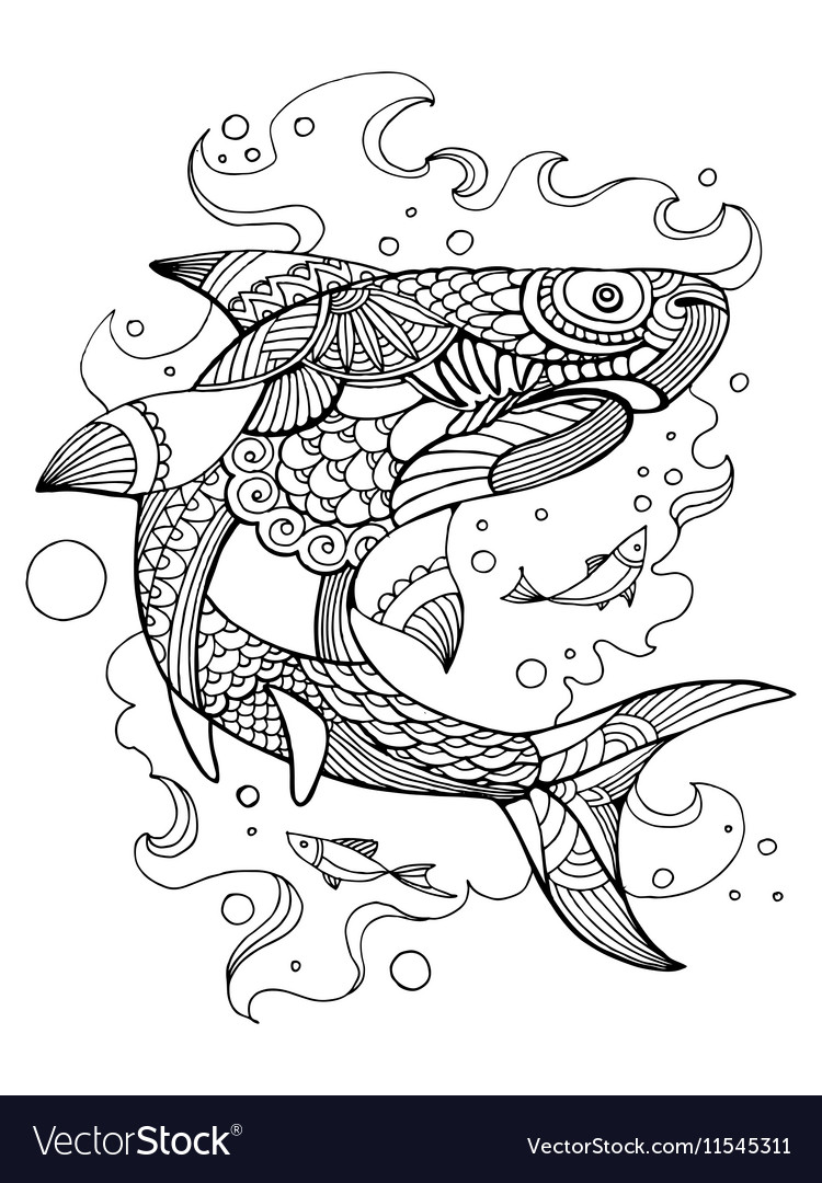 - Shark Coloring Book For Adults Royalty Free Vector Image