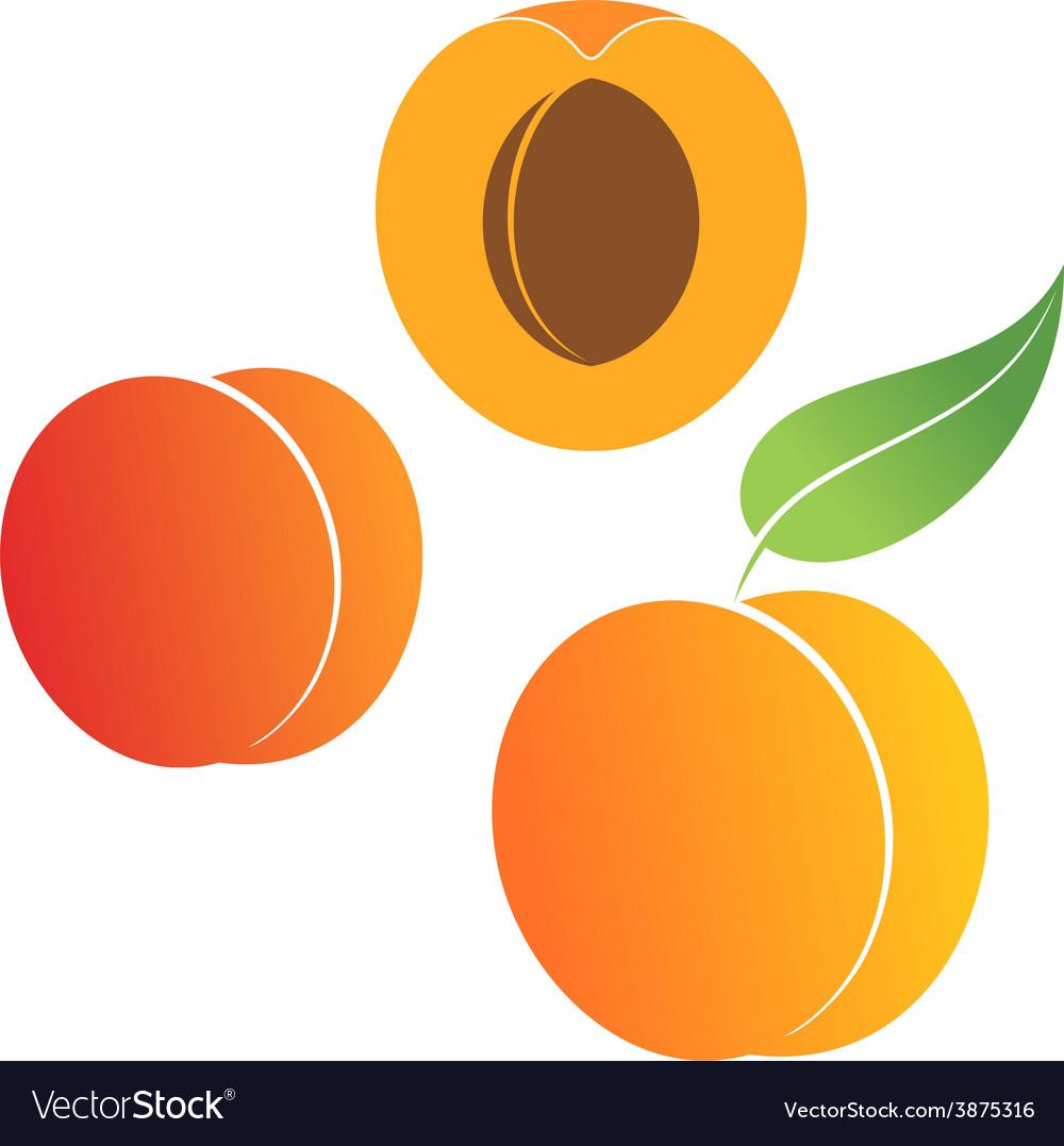 Peach Set vector image