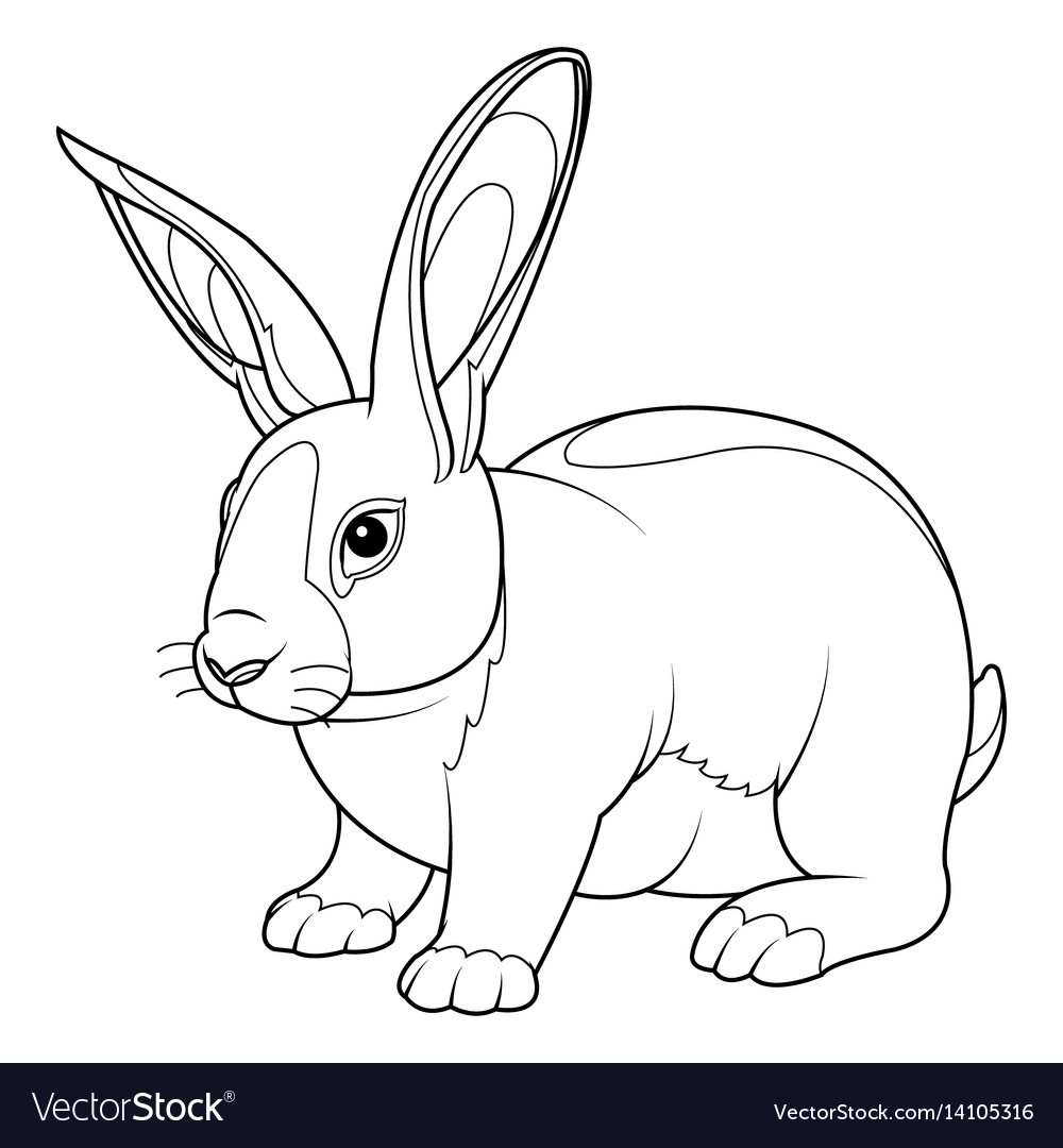- Rabbit Coloring Page Royalty Free Vector Image