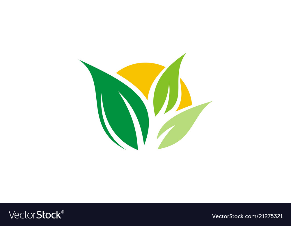 Green leaf abstract logo