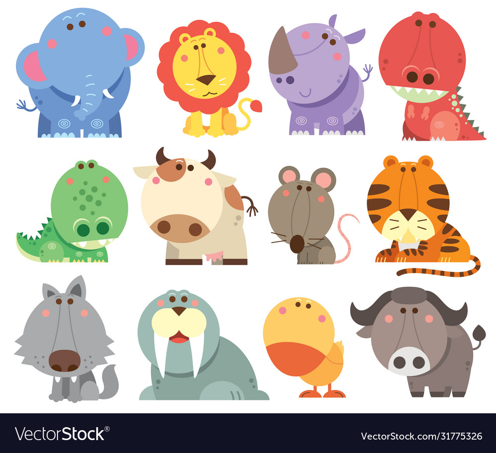 Animals cartoons