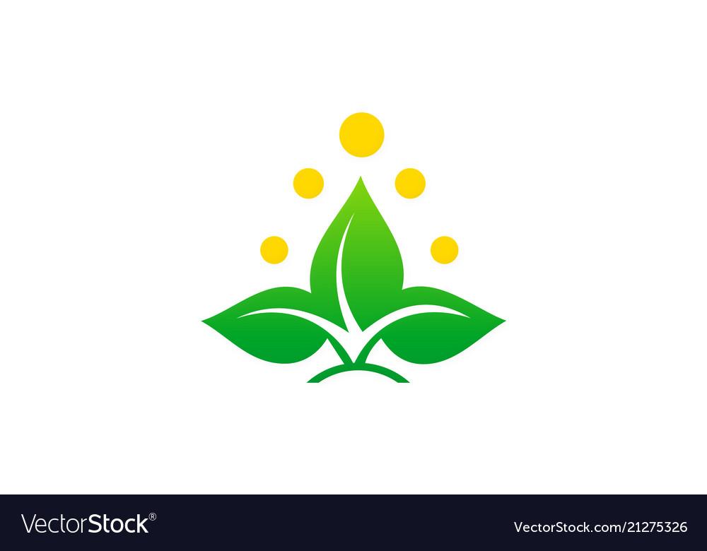 Green leaf beauty logo