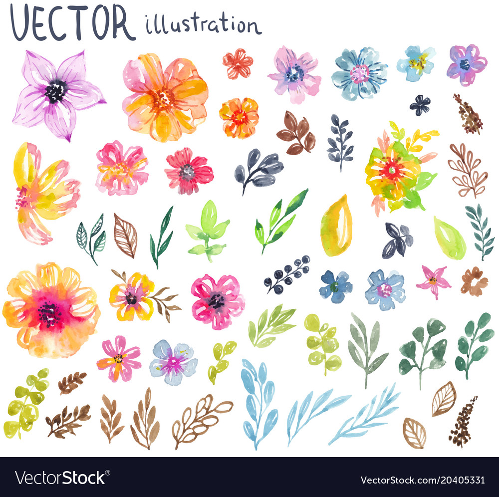Colorful floral collection with flowers leaves