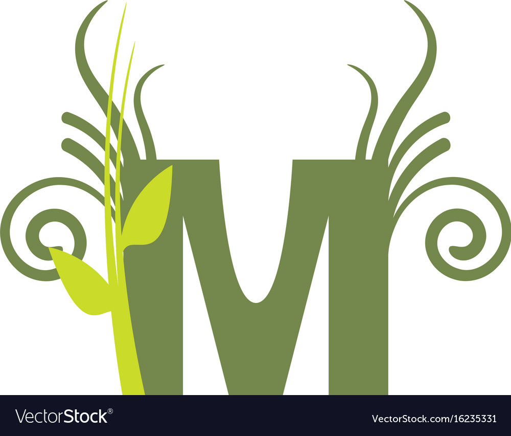 Nature m vector image