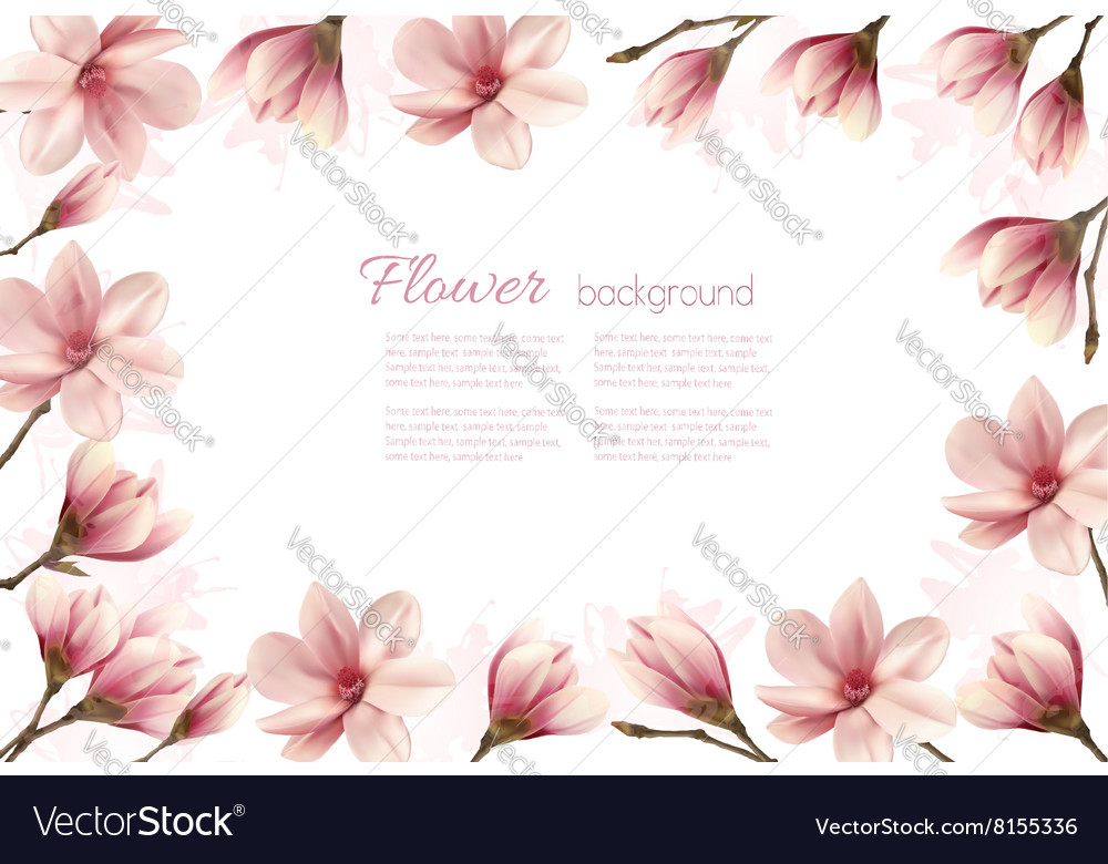 Flower Background With A Border Of Pink Magnolia Vector Image