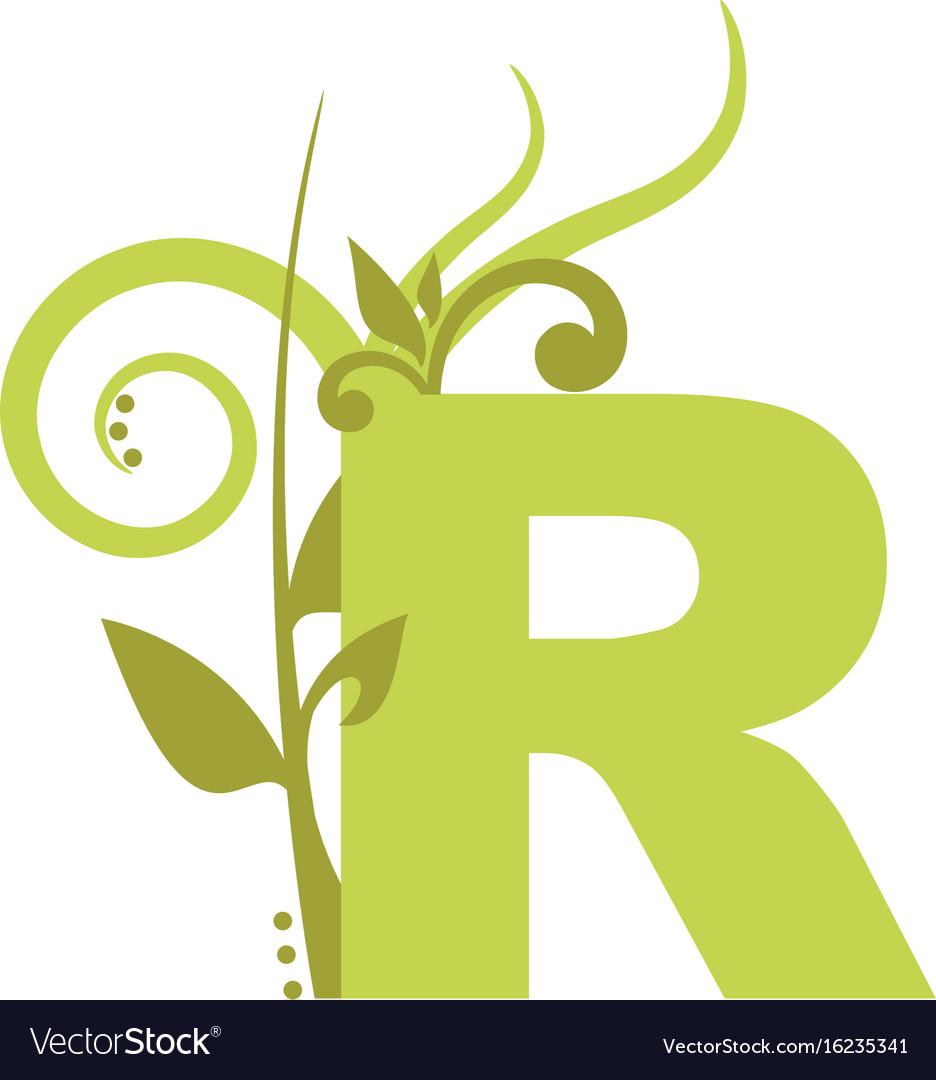Nature r vector image
