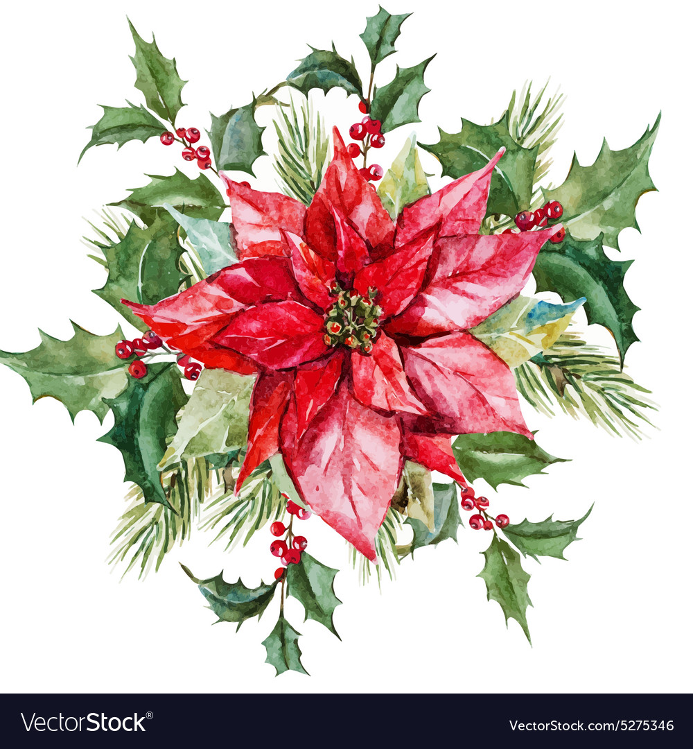 Watercolor christmas flowers