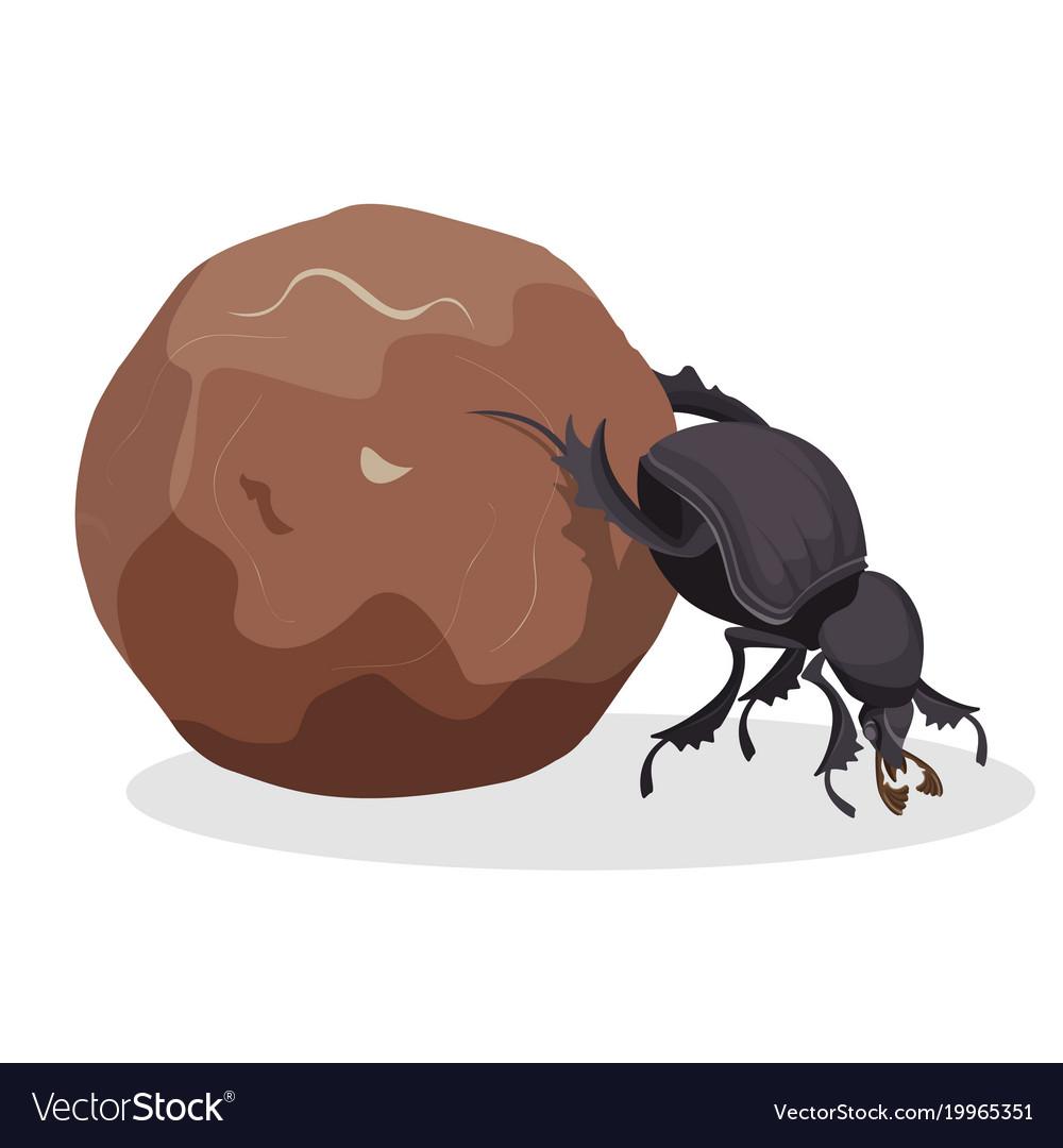 Big dung beetle that pushes big dirty ball