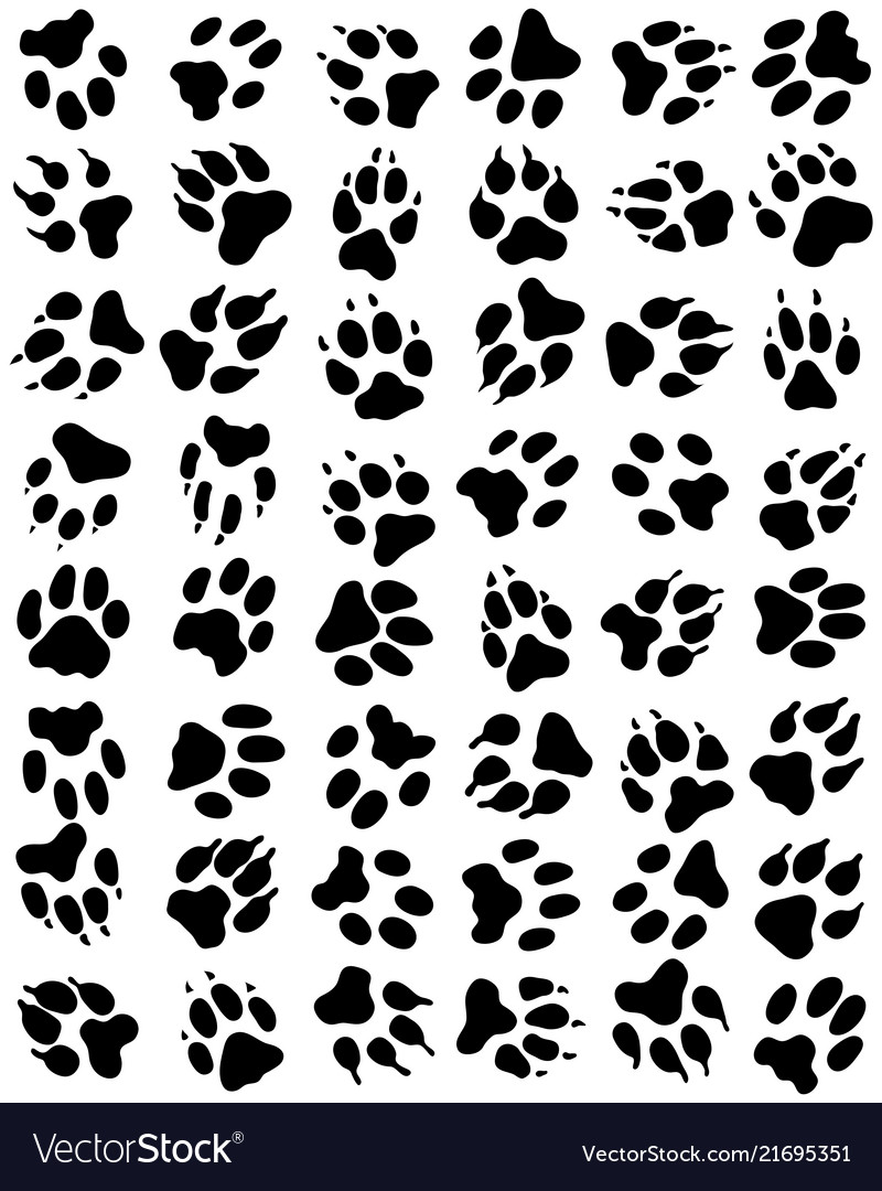 Seamless pattern of print of dogs paws