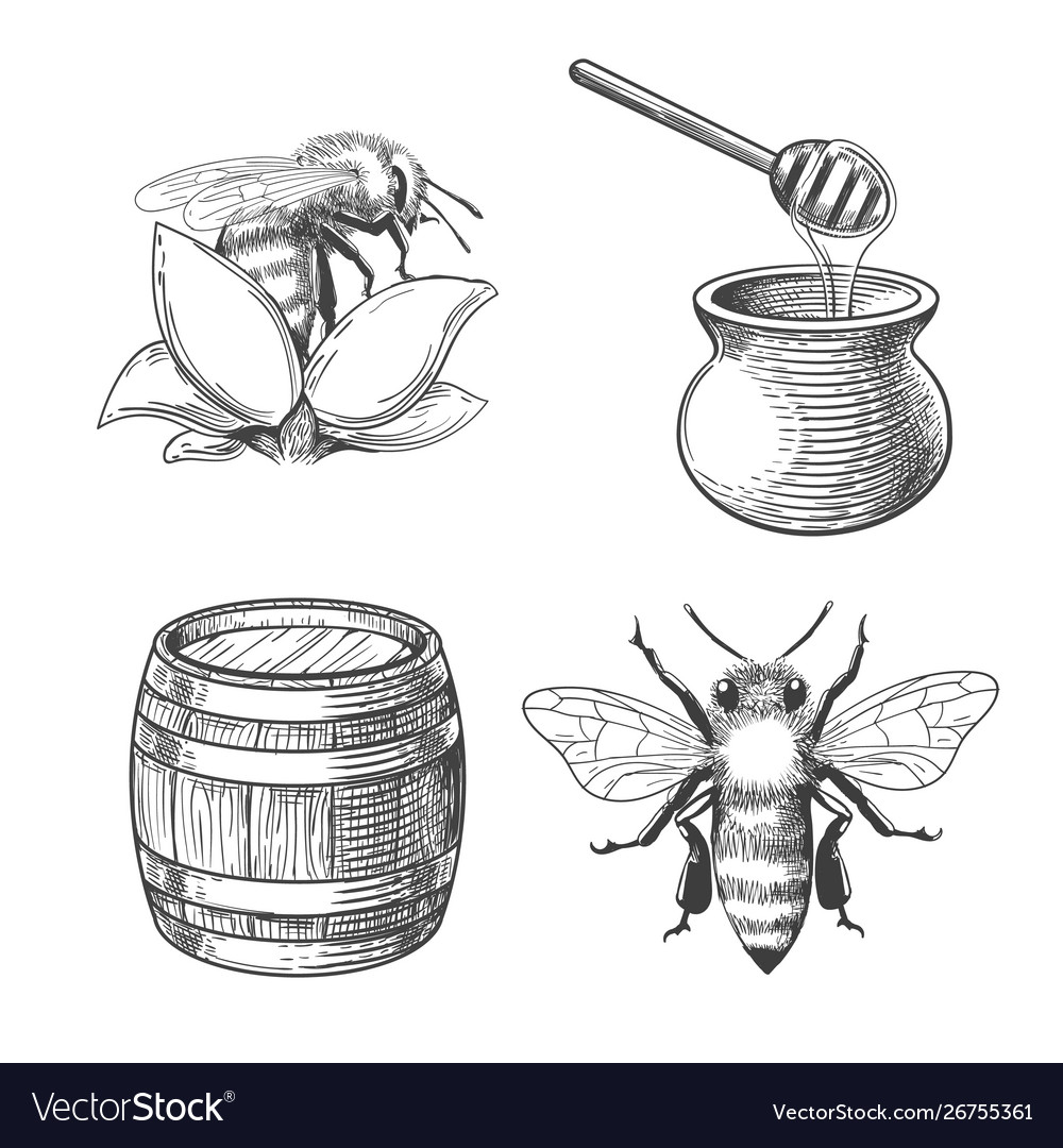 Honey pot and bee engravings