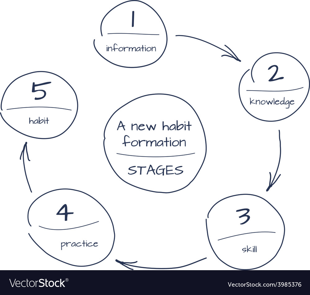 Hand drawn sketch of process step by step diagram vector image