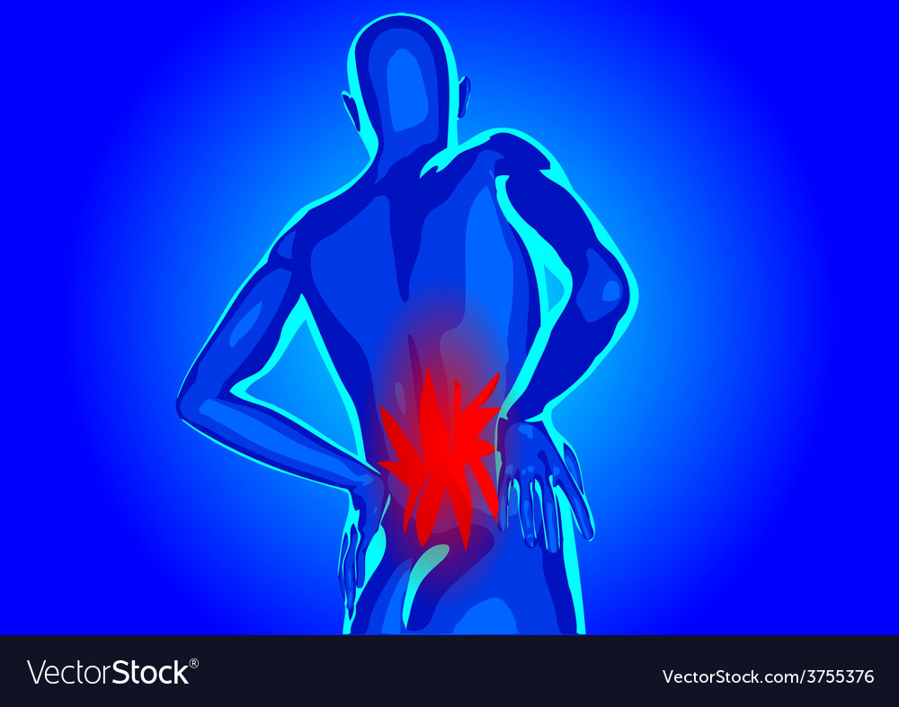 Lower Back Pain Royalty Free Vector Image Vectorstock