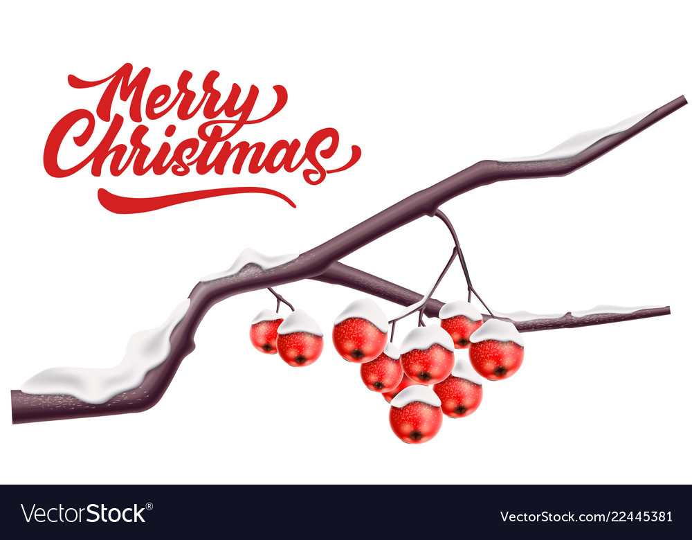Merry christmas lettering rowan red berry