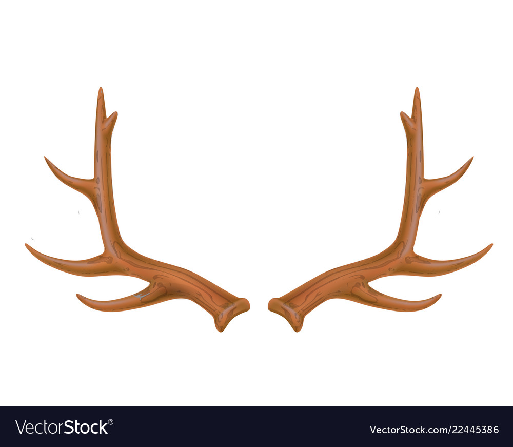 Reindeer antlers deer horns realistic logo