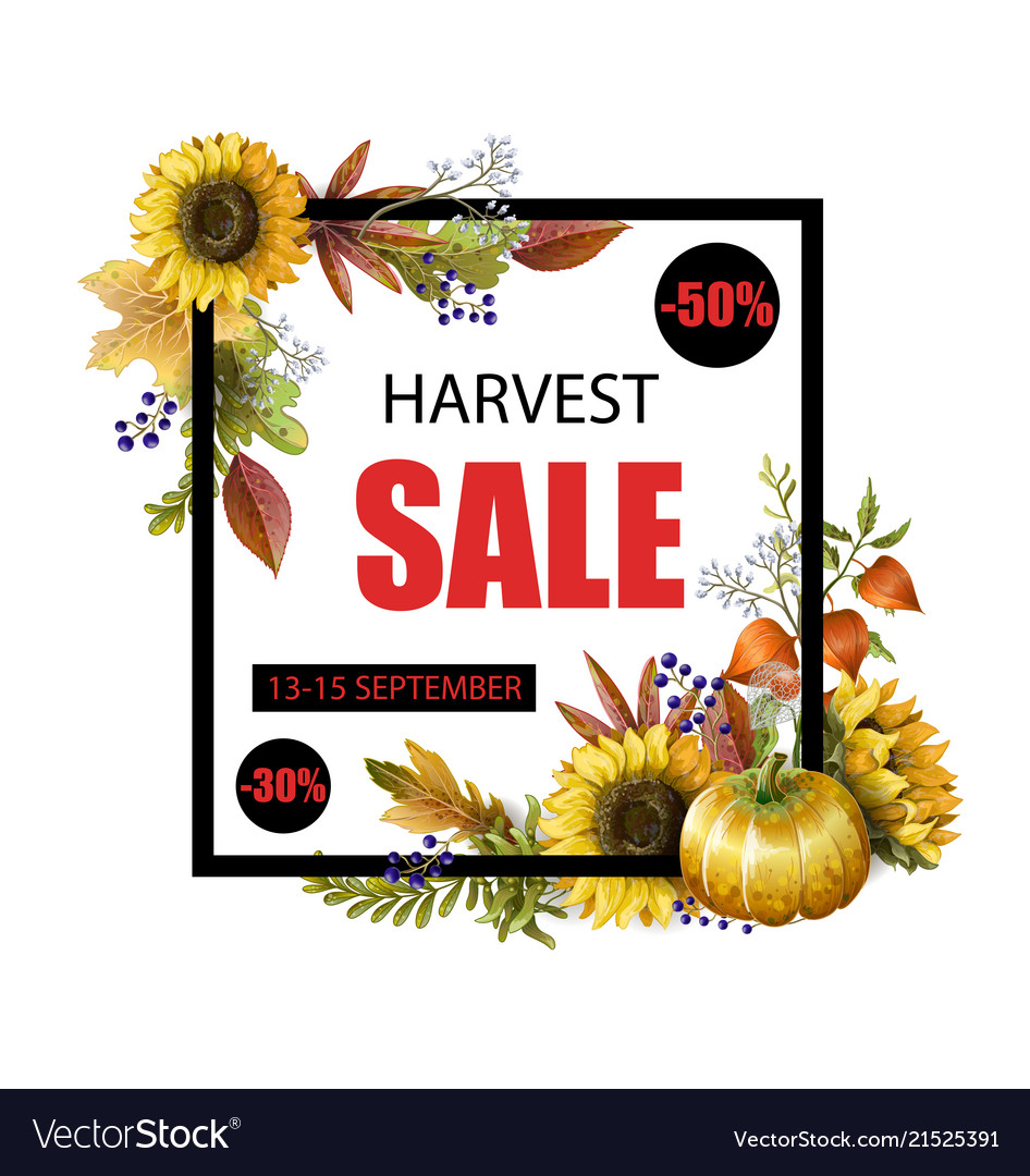 Banner autumn sale with yellow leaves