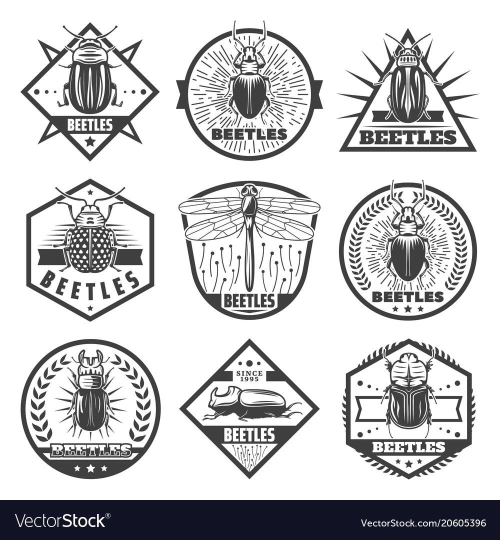 Vintage monochrome beetles premium labels set