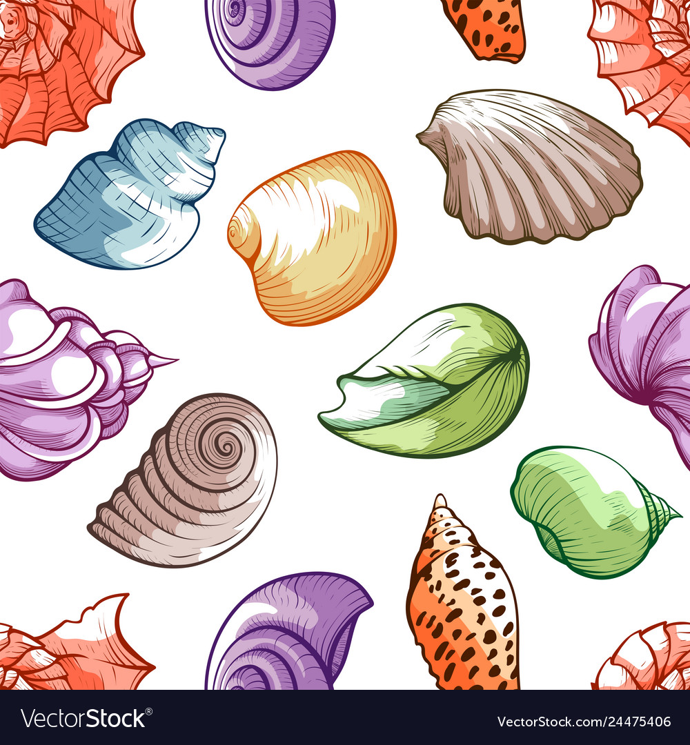 Sea shell pattern bright decoration and travel