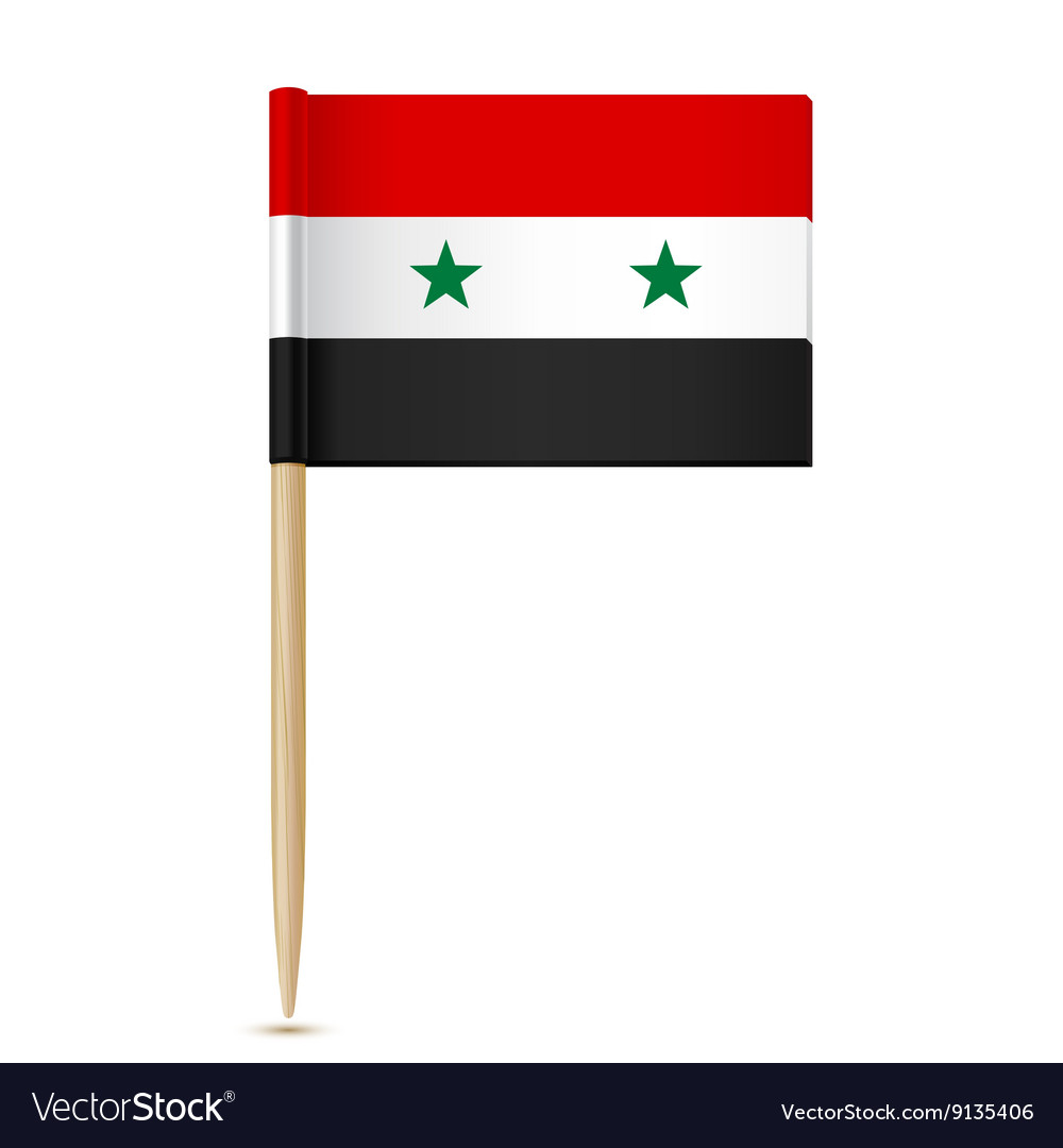 Syria flag toothpick vector image