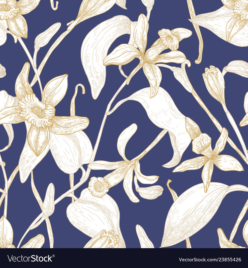 Elegant seamless pattern with blooming vanilla