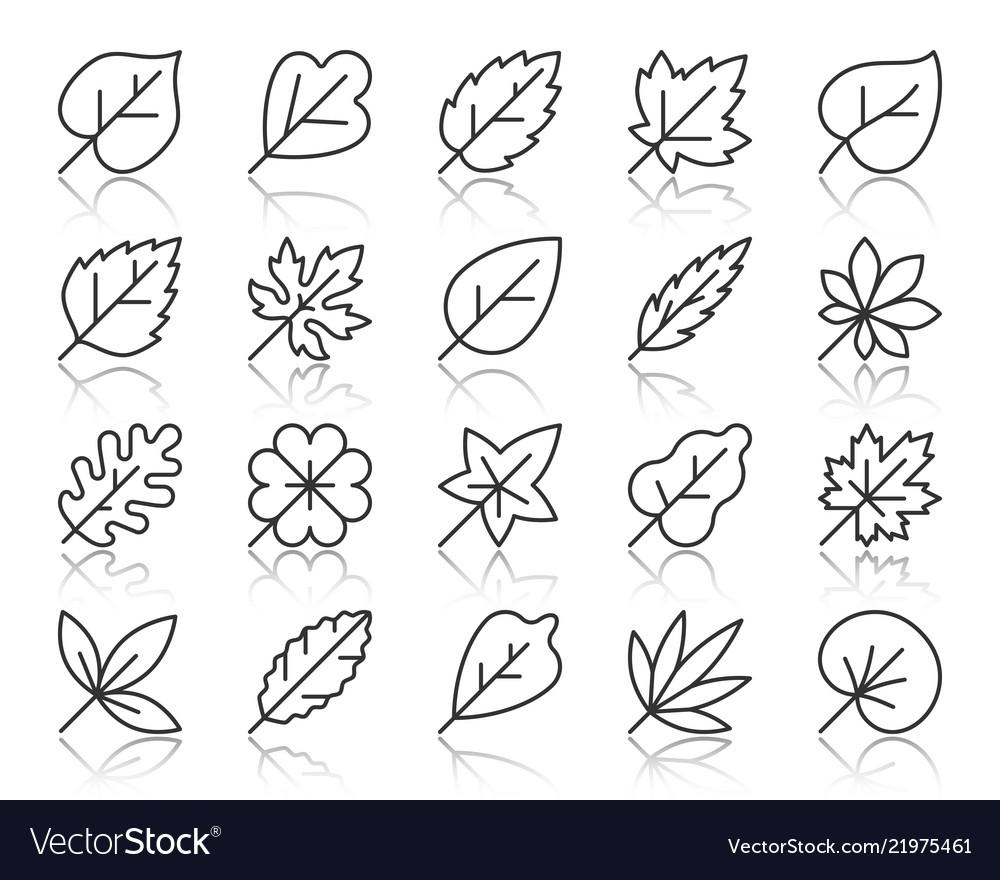 Organic leaf simple black line icons set