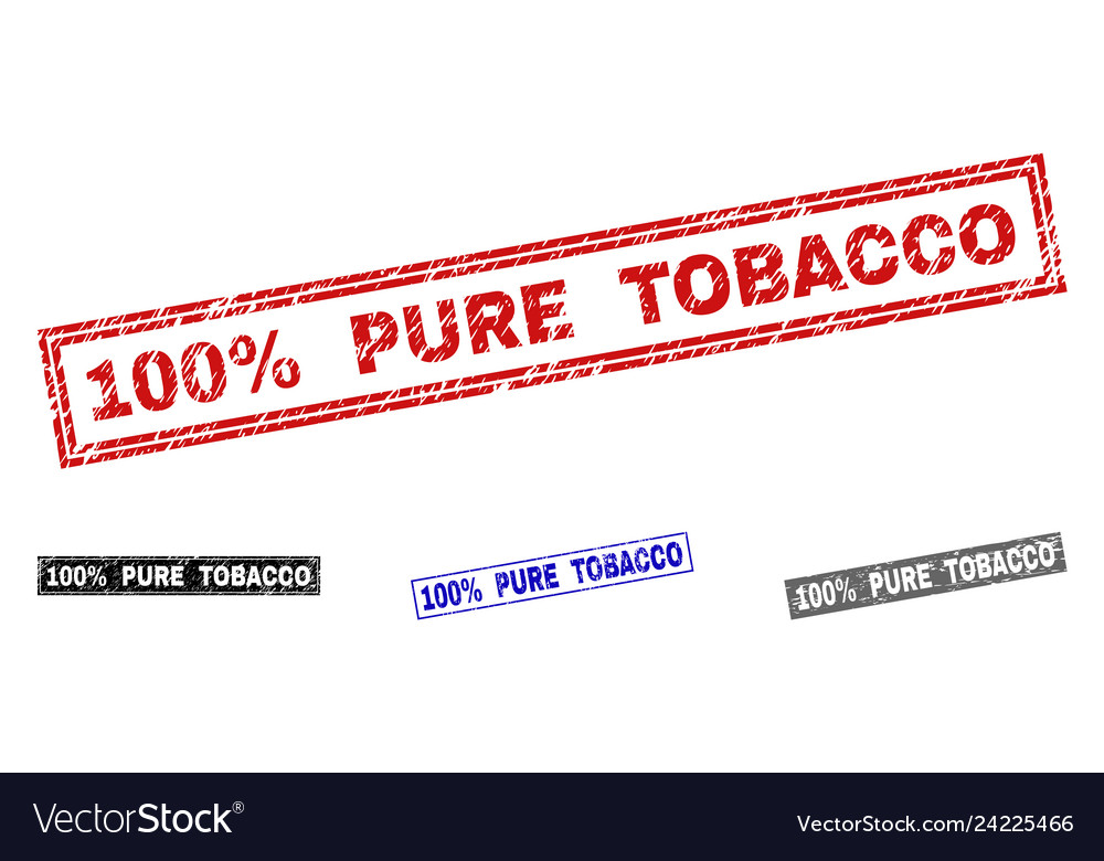 Grunge 100 percent pure tobacco scratched vector image