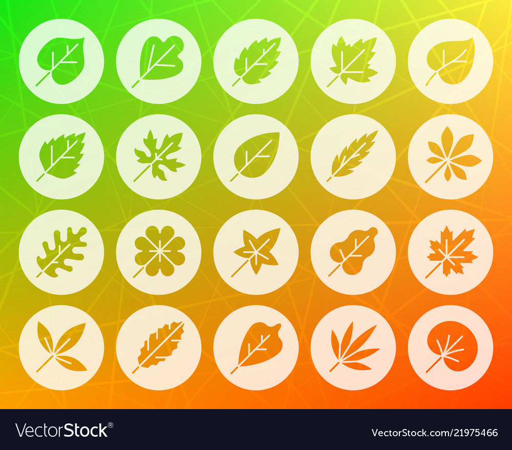 Organic leaf shape carved flat icons set