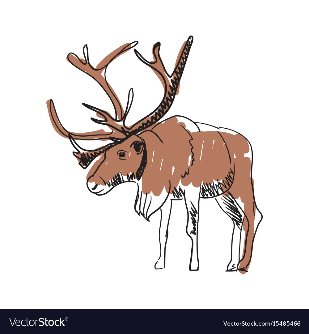 Reindeer hand drawn isolated icon