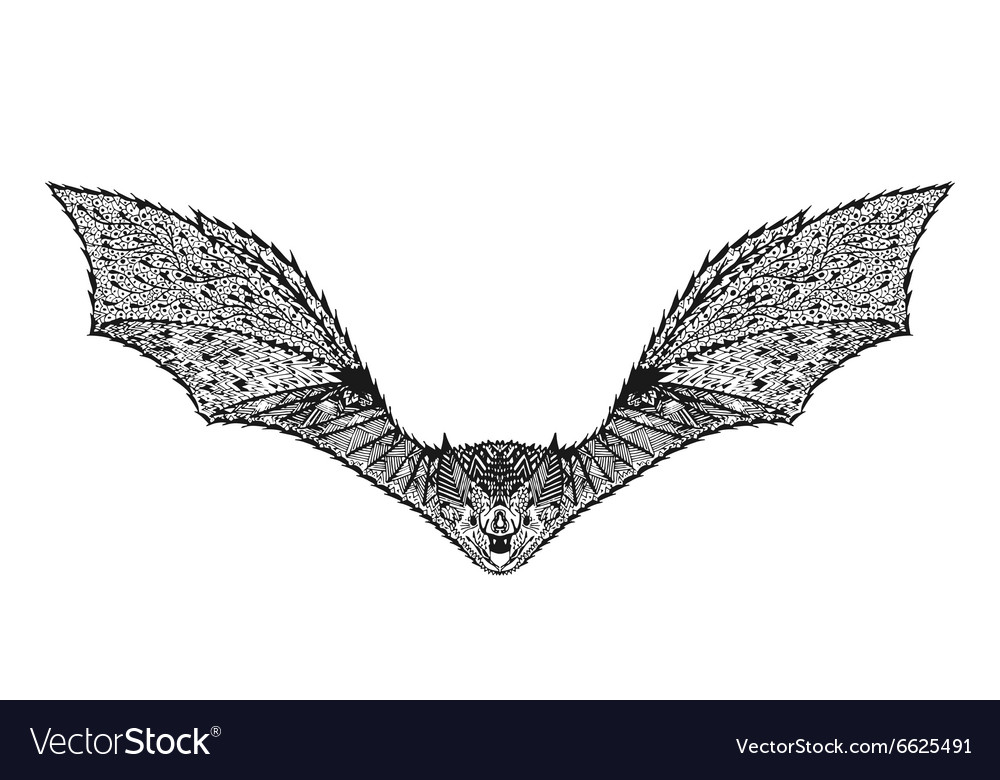 Entangle stylized bat sketch for tattoo or t