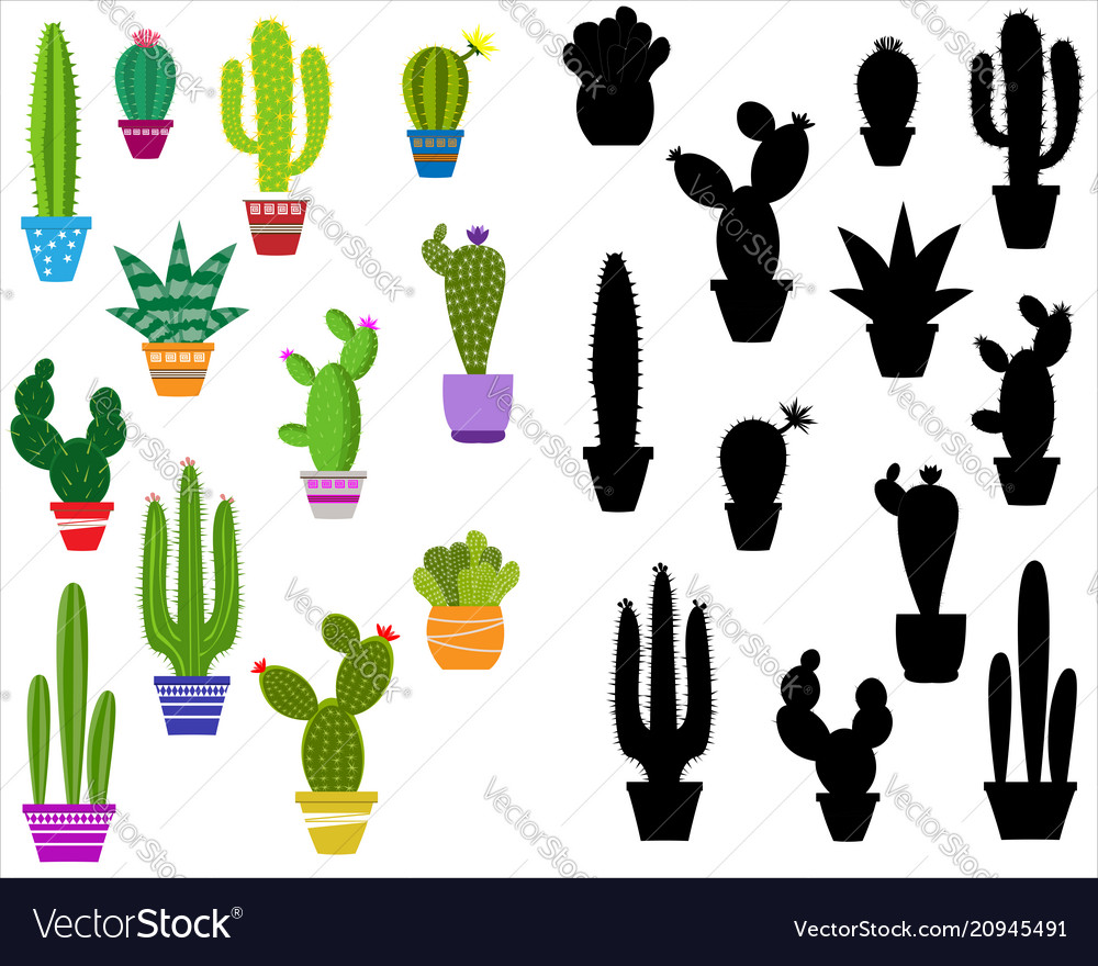 Home cactus icons cactus icons in a flat style