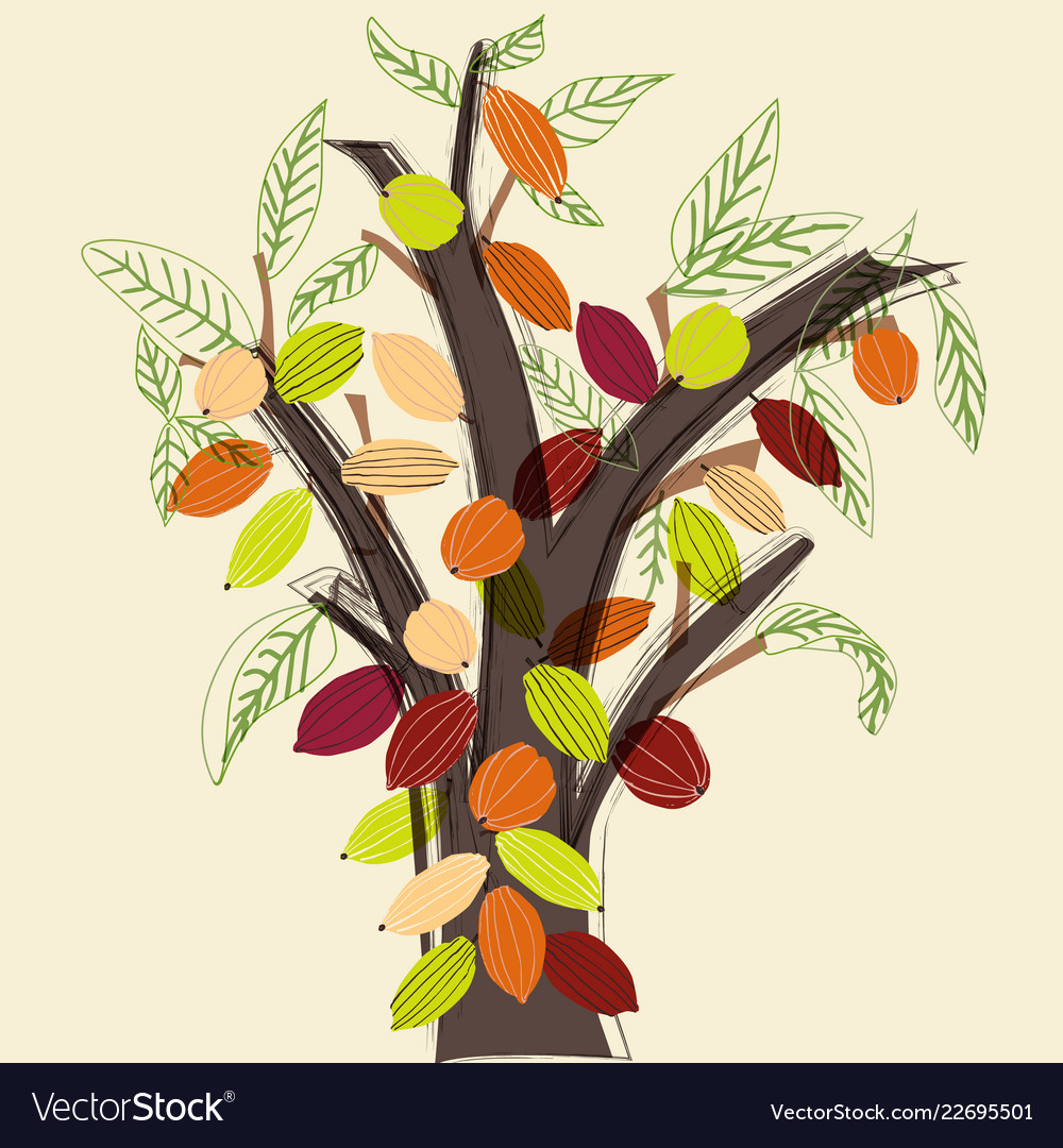 Colorful cacao tree in a stylized