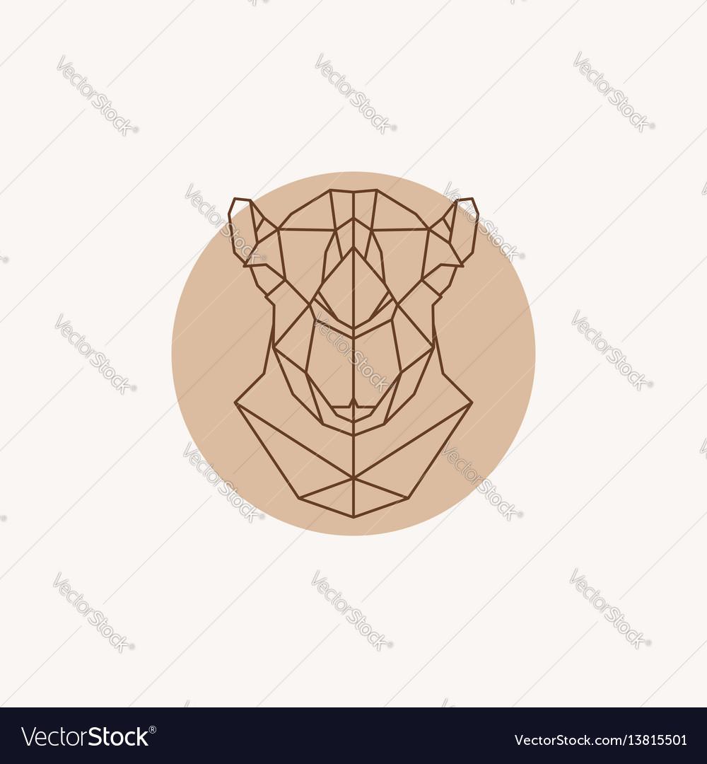 Geometric of a head camel