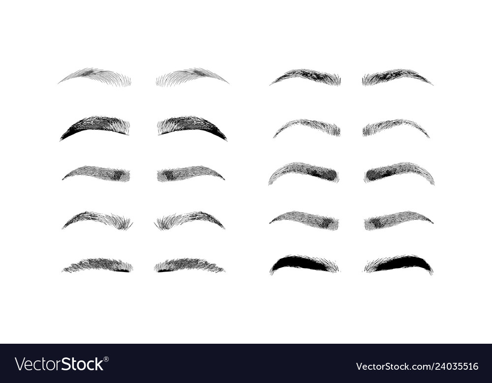 Eyebrow shapes various types of eyebrows classic