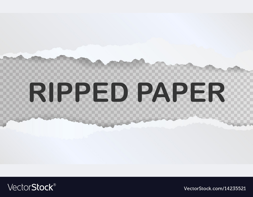 Realistic ripped paper