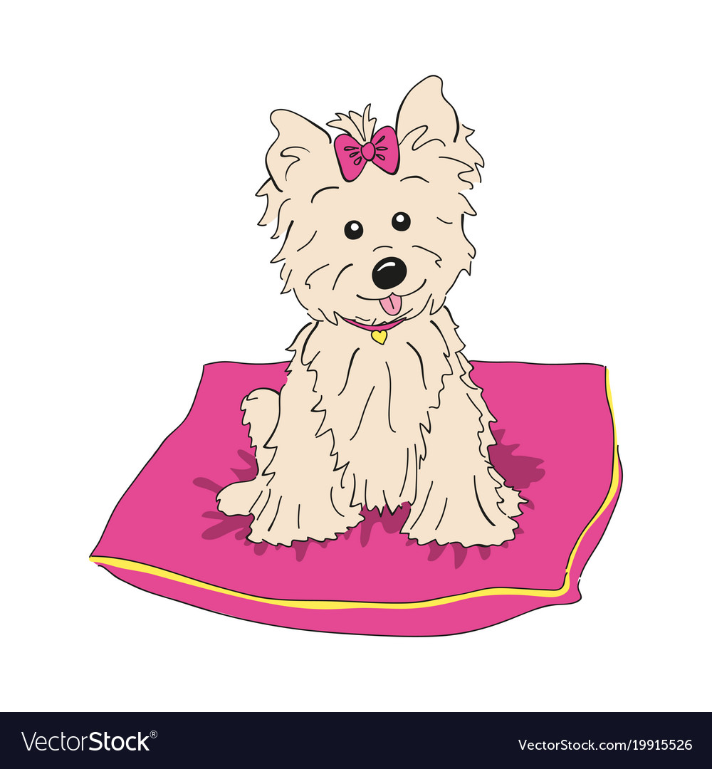 Cairn Terrier Dog Breed Vintage Royalty Free Vector Image