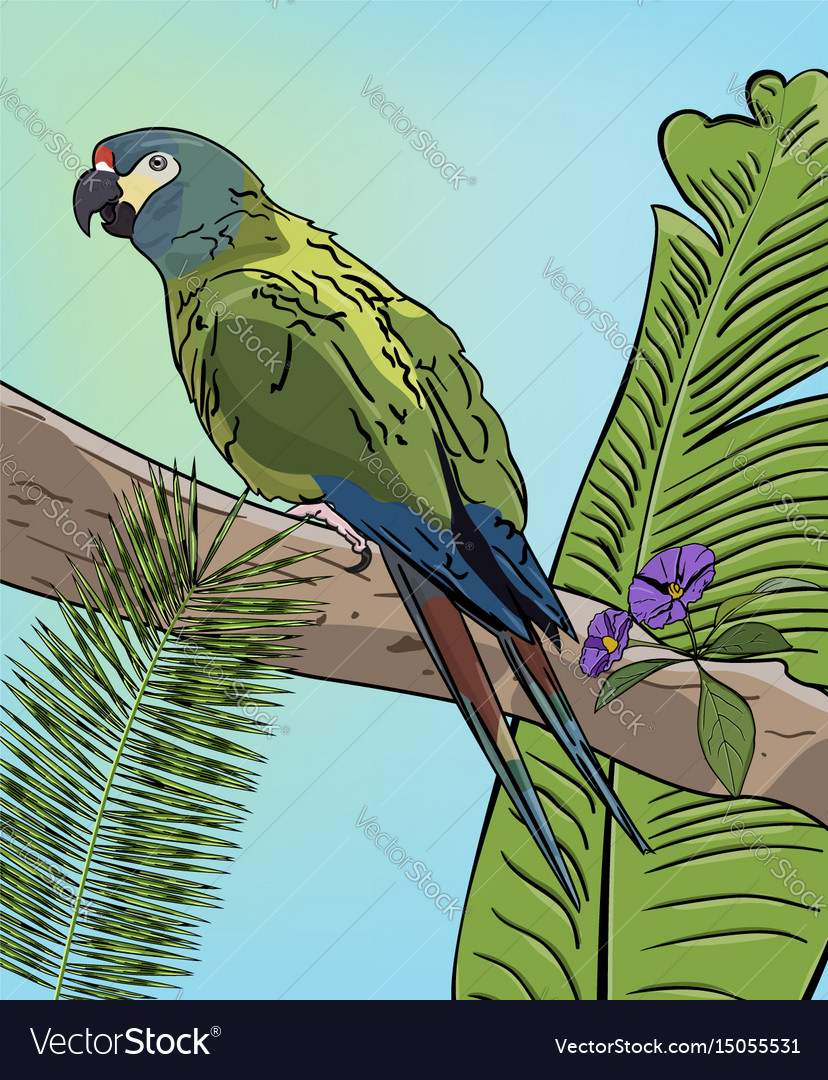 Green macaw parrot on branch