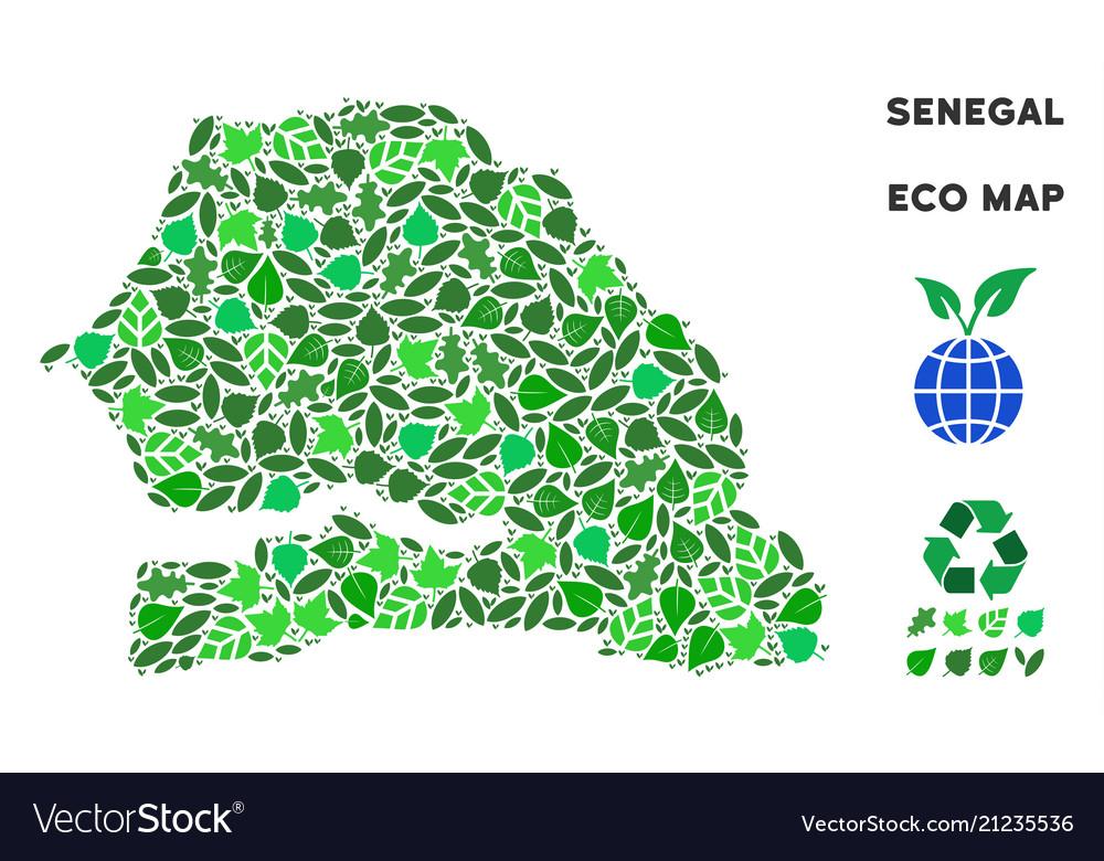 Ecology green composition senegal map